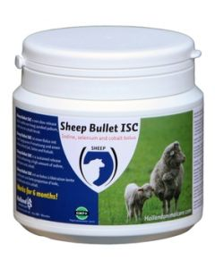 Sheep bullet ISC 20 st
